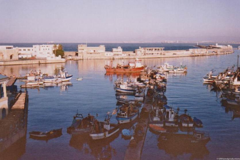 algérie 12