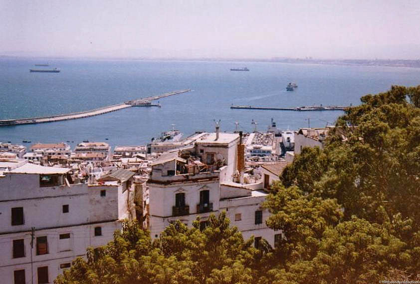 algérie 16