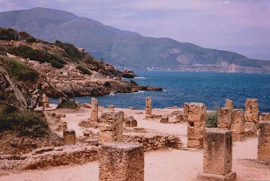 algérie 5