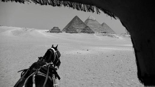 Egypte-23